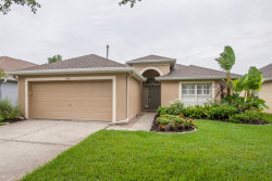 Photo of 11341 Cypress Reserve Drive, TAMPA, FL 33626 (MLS # T3193436)