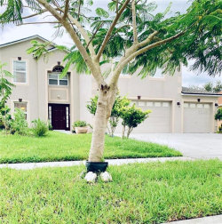 Photo of 5289 Sunset Canyon Drive, KISSIMMEE, FL 34758 (MLS # T3193476)