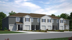 Photo of 8632 Falling Blue Place, RIVERVIEW, FL 33578 (MLS # T3193902)