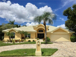 Photo of 10204 Bay Breeze Court, TAMPA, FL 33615 (MLS # T3193966)