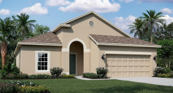 Photo of 2704 Creekmore Court, KISSIMMEE, FL 34746 (MLS # T3194107)