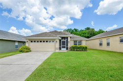 Photo of 6838 Shimmering Drive, LAKELAND, FL 33813 (MLS # T3194781)