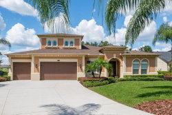 Photo of 2606 Meadow Grange Lane, LUTZ, FL 33559 (MLS # T3196259)
