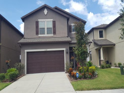 Photo of 6309 Pin Cherry Place, RIVERVIEW, FL 33578 (MLS # T3196877)