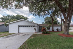 Photo of 706 Caliente Drive, BRANDON, FL 33511 (MLS # T3198291)