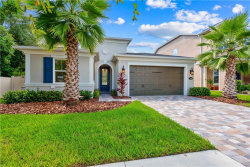 Photo of 17802 Woodland View Drive, LUTZ, FL 33548 (MLS # T3198295)