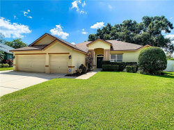 Photo of 1134 Lumsden Trace Circle, VALRICO, FL 33594 (MLS # T3198356)
