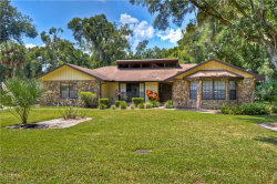 Photo of 4619 Ridgecliff Drive, BRANDON, FL 33511 (MLS # T3198383)