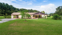 Photo of 39901 River Road, DADE CITY, FL 33525 (MLS # T3198398)