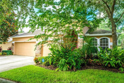 Photo of 5918 Tealwater Place, LITHIA, FL 33547 (MLS # T3198699)