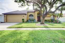 Photo of 14916 Redcliff Drive, TAMPA, FL 33625 (MLS # T3198815)