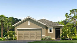 Photo of 32661 Abby Lax Lane, WESLEY CHAPEL, FL 33543 (MLS # T3198886)