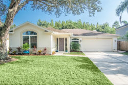 Photo of 1216 Cord Grass Court, WESLEY CHAPEL, FL 33543 (MLS # T3198994)