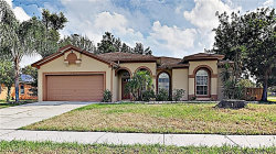 Photo of 10312 Sedgebrook Place, RIVERVIEW, FL 33569 (MLS # T3199300)