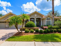 Photo of 10811 Barbados Isle Drive, TAMPA, FL 33647 (MLS # T3199506)