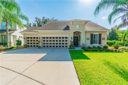 Photo of 2636 Red Fern Drive, DOVER, FL 33527 (MLS # T3199526)