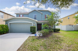 Photo of 10332 Frog Pond Drive, RIVERVIEW, FL 33569 (MLS # T3199601)