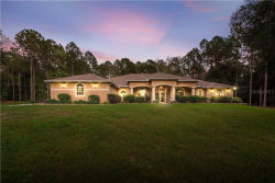 Photo of 32720 Timber Hill Drive, DADE CITY, FL 33523 (MLS # T3200459)