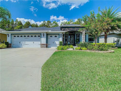 Photo of 10216 Hyannisport Loop, SAN ANTONIO, FL 33576 (MLS # T3201681)