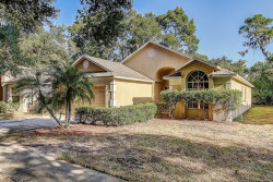 Photo of 625 Somerstone Drive, VALRICO, FL 33594 (MLS # T3202383)