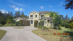 Photo of 1515 Amarone Place, LUTZ, FL 33548 (MLS # T3203386)