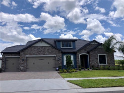 Photo of 6143 Marsh Trail Drive, ODESSA, FL 33556 (MLS # T3204703)