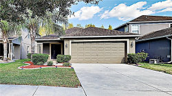 Photo of 3224 Herne Bay Court, LAND O LAKES, FL 34638 (MLS # T3204709)