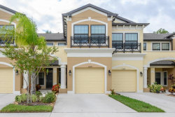 Photo of 11506 Crowned Sparrow Lane, TAMPA, FL 33626 (MLS # T3205212)
