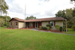 Photo of 11304 Trotwood Drive, RIVERVIEW, FL 33578 (MLS # T3206037)