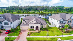 Photo of 19426 Whispering Brook Drive, TAMPA, FL 33647 (MLS # T3206321)