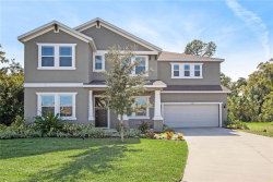Photo of 3336 Gina Court, HOLIDAY, FL 34691 (MLS # T3206408)