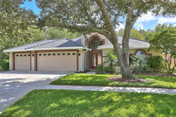 Photo of 5502 Avenue Du Soleil, LUTZ, FL 33558 (MLS # T3206701)