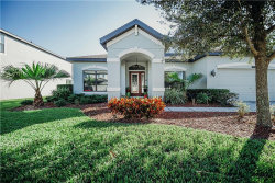 Photo of 8234 Bluevine Sky Drive, LAND O LAKES, FL 34637 (MLS # T3207050)