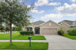 Photo of 15713 Courtside View Drive, LITHIA, FL 33547 (MLS # T3209674)