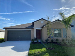 Photo of 5042 White Chicory Drive, APOLLO BEACH, FL 33572 (MLS # T3209812)