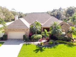 Photo of 2309 Highlander Way, VALRICO, FL 33596 (MLS # T3209906)