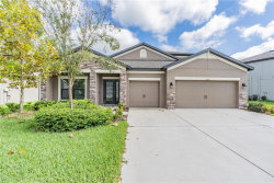 Photo of 7906 Lago Mist Way, WESLEY CHAPEL, FL 33545 (MLS # T3209926)