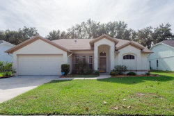 Photo of 9716 Glenpointe Drive, RIVERVIEW, FL 33569 (MLS # T3210386)
