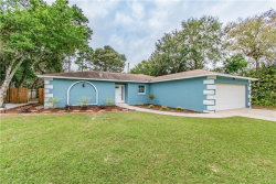 Photo of 2179 Canfield Drive, SPRING HILL, FL 34609 (MLS # T3210575)