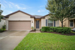 Photo of 9227 Mountain Magnolia Drive, RIVERVIEW, FL 33578 (MLS # T3210887)