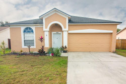Photo of 11535 Wellman Drive, RIVERVIEW, FL 33578 (MLS # T3210944)