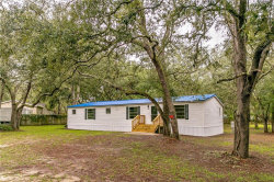 Photo of 34921 Emily Drive, DADE CITY, FL 33523 (MLS # T3210962)