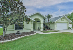 Photo of 4847 Basswood Street, LAND O LAKES, FL 34639 (MLS # T3211053)