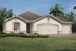Photo of 1003 Better Days Place, Unit 70, VALRICO, FL 33594 (MLS # T3211071)