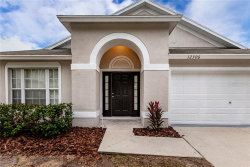 Photo of 12306 Hawkeye Point Place, RIVERVIEW, FL 33578 (MLS # T3211219)