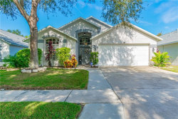 Photo of 10124 Somersby Drive, RIVERVIEW, FL 33578 (MLS # T3211578)