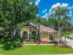 Photo of 21609 Trumpeter Drive, LAND O LAKES, FL 34639 (MLS # T3211709)