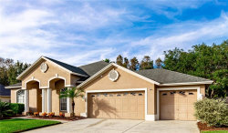Photo of 18004 Kings Park Drive, TAMPA, FL 33647 (MLS # T3212144)