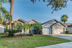 Photo of 8305 Golden Prairie Drive, TAMPA, FL 33647 (MLS # T3212438)