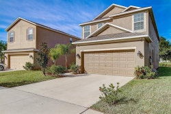 Photo of 14045 Lugano Court, HUDSON, FL 34669 (MLS # T3212865)